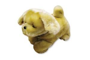 Lucy Hund