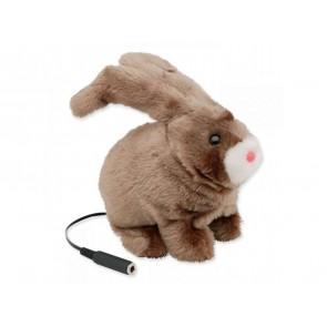 Adaptiertes Spielzeug Hase Robbie